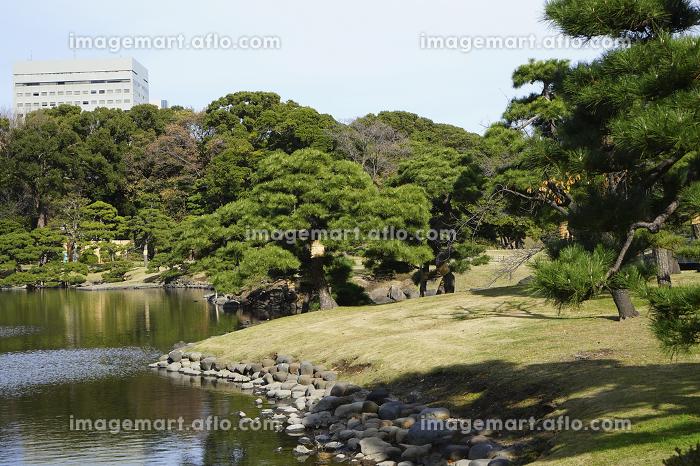日本庭園の販売画像
