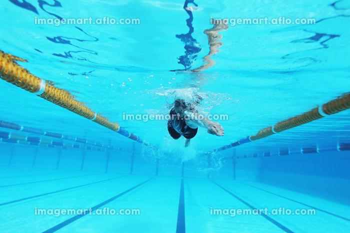 女子競泳 自由形の販売画像