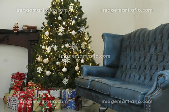 大きなクリスマスツリーの飾られたリビングルームの販売画像