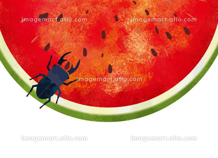 夏:虫 西瓜 スイカ割り 自然 真夏 夏休み 思い出 果物 水彩 手描き フルーツ 種 果汁の販売画像