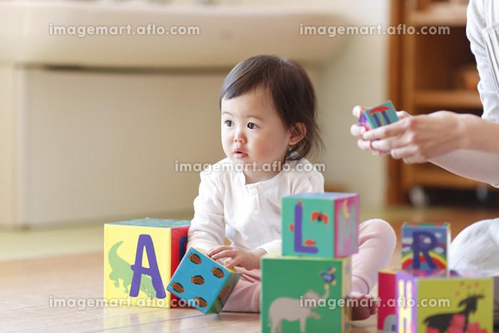 保育園で遊ぶ園児の販売画像