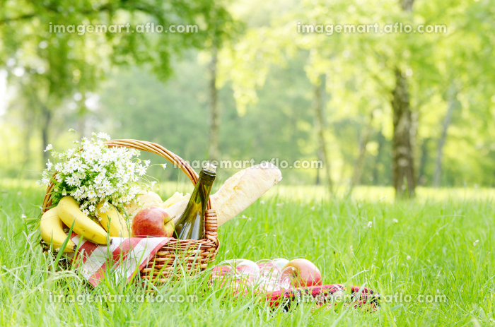 Picnic basket with apples bananas cheese and wine on green grassの販売画像