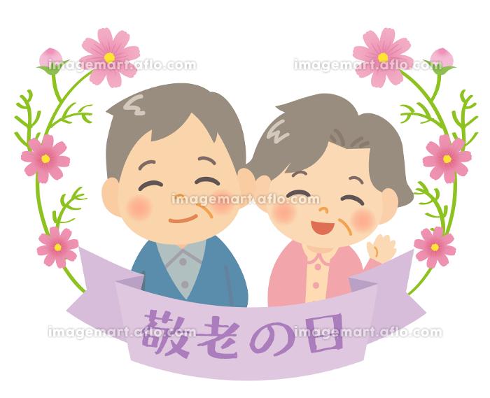 笑顔のおじいちゃんとおばあちゃん 敬老の日のリボンとコスモスのあしらいの販売画像