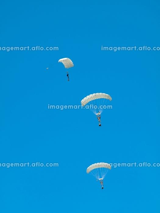 着地 スカイダイビング チームの販売画像