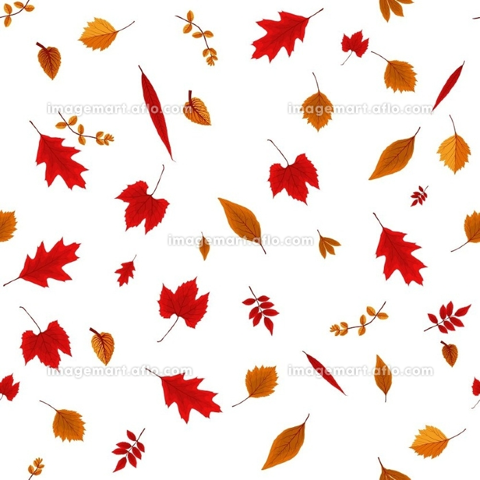 Falling Colorful Autumn Leaves on White Background. Seamless Pattern. Vector Illustration. EPS10
