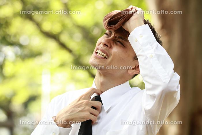 タオルで汗を拭う男性社員の販売画像