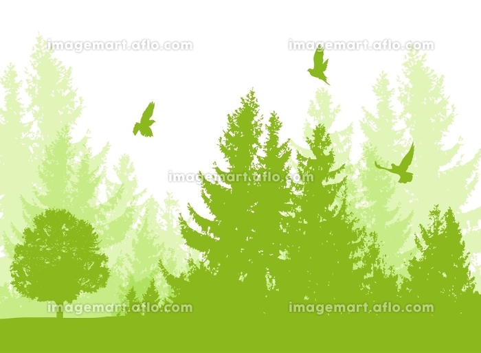 Nature landscape with green firs and birds. Vector floral background.