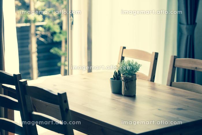 ダイニングテーブルに置かれた観葉植物の販売画像