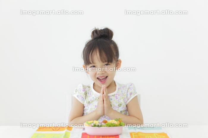 お弁当を食べる女の子の販売画像