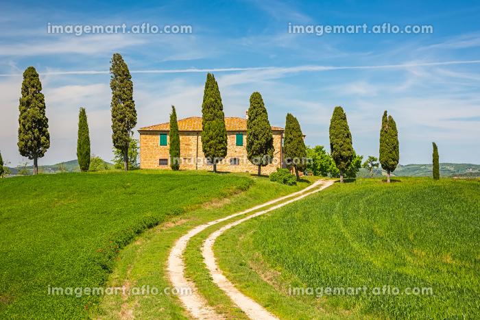 Tuscany spring landscapeの販売画像