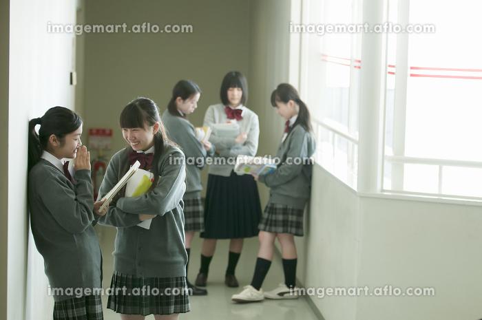 廊下で談笑をする中学生の販売画像