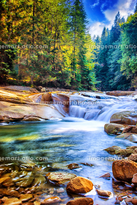 Beautiful waterfall in the forestの販売画像