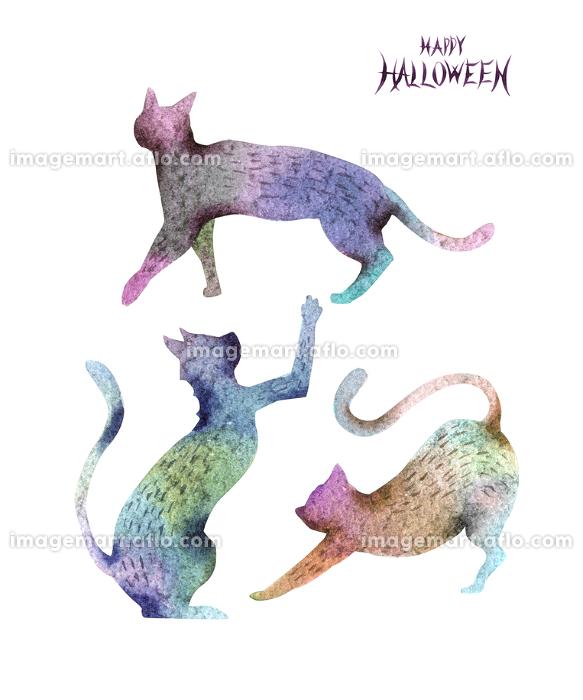 ハロウィン ハロウィーン 猫 黒猫 シルエット 水彩 イラストの販売画像