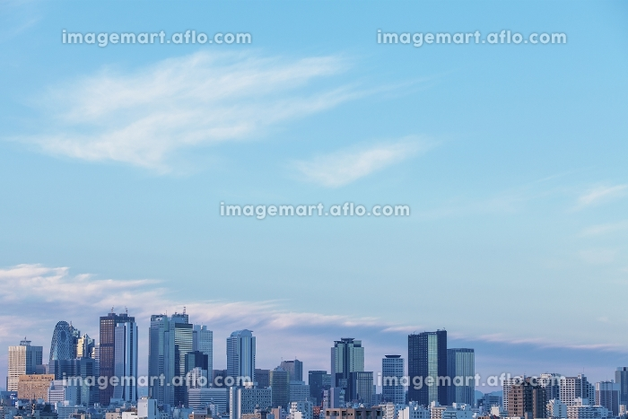 東京都 新宿副都心高層ビル群の販売画像