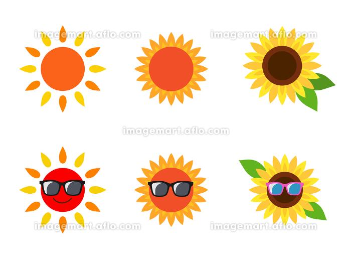 太陽 ひまわり アイコンの販売画像