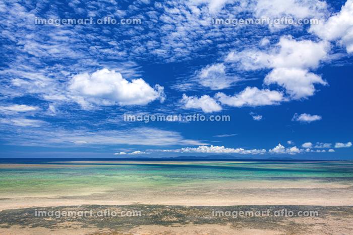 沖縄県・西表島 引き潮の海岸と夏の海の風景の販売画像