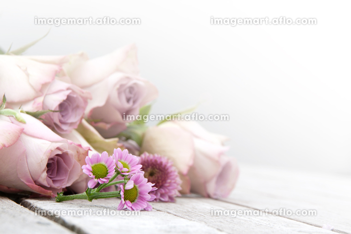 still life with pastel roses and daisiesの販売画像