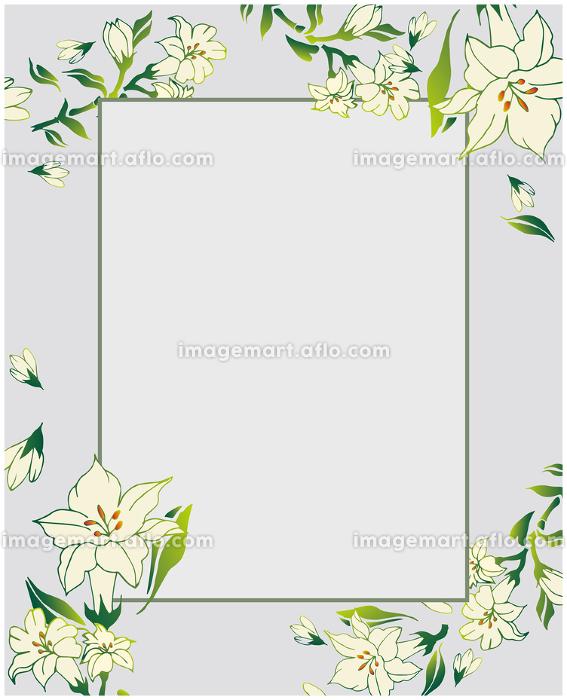 百合の花 フレーム 枠の販売画像