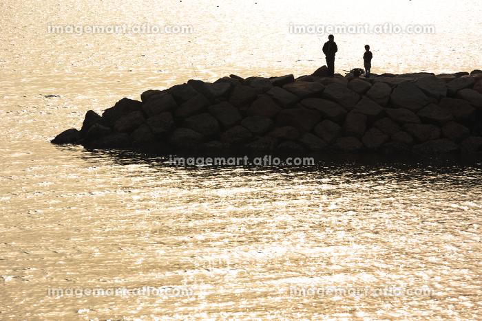 四国、小豆島の11月の風景 香川・日本の販売画像