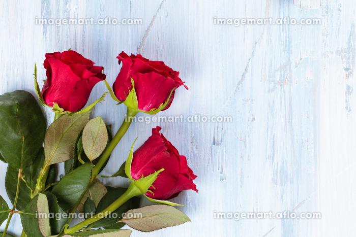 Frame of roses.の販売画像