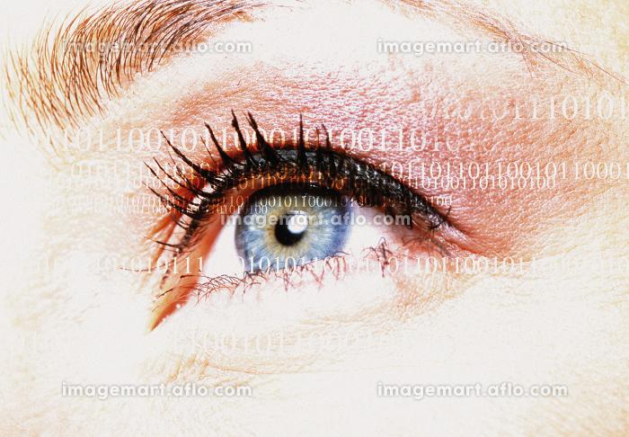 ディジタル イラスト デジタルイラストの販売画像