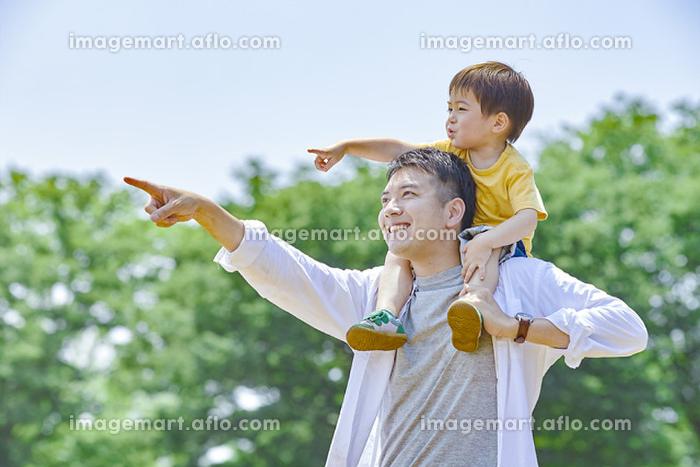 息子を肩車する日本の父親の販売画像