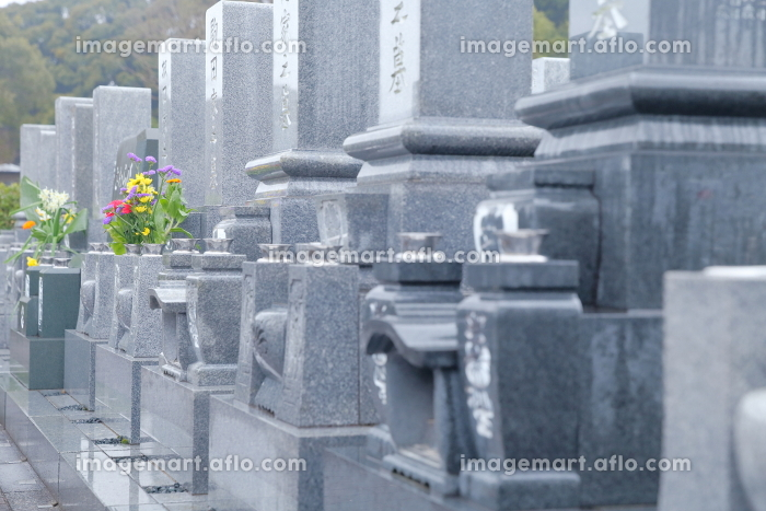 お墓の販売画像