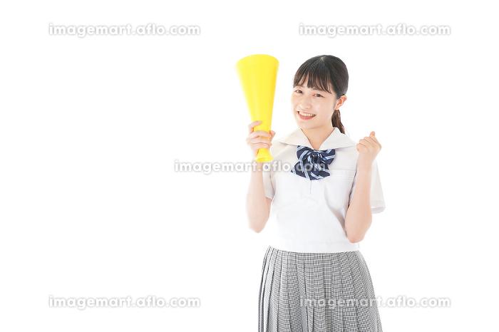 スポーツの応援をする若い女性の販売画像