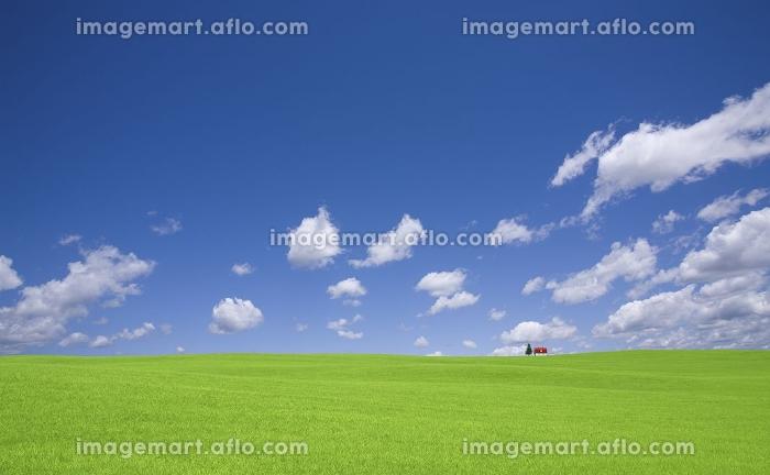 草原の赤い屋根の家と雲の販売画像