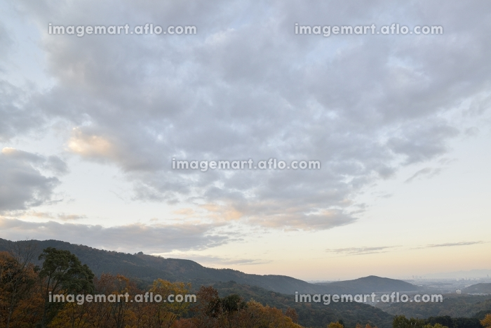 朝の風景の販売画像