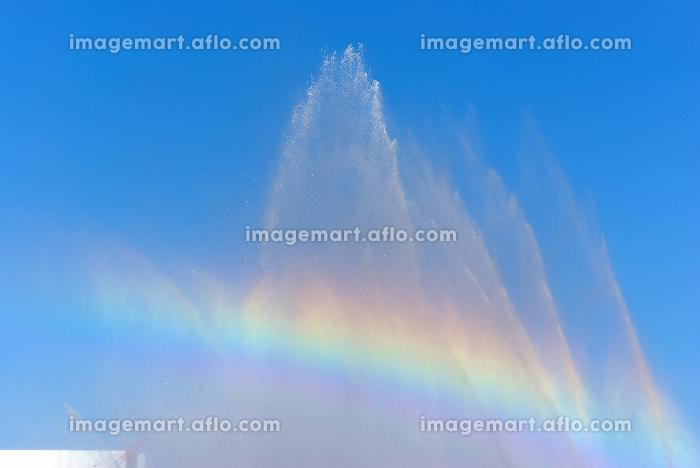 消防出初式の一斉放水の水しぶきに架かる虹の販売画像