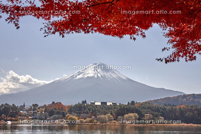 秋の河口湖と富士山の販売画像