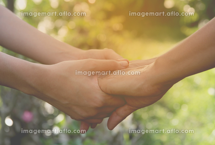 Hand of lady and younger lady holding together on nature backgroundの販売画像