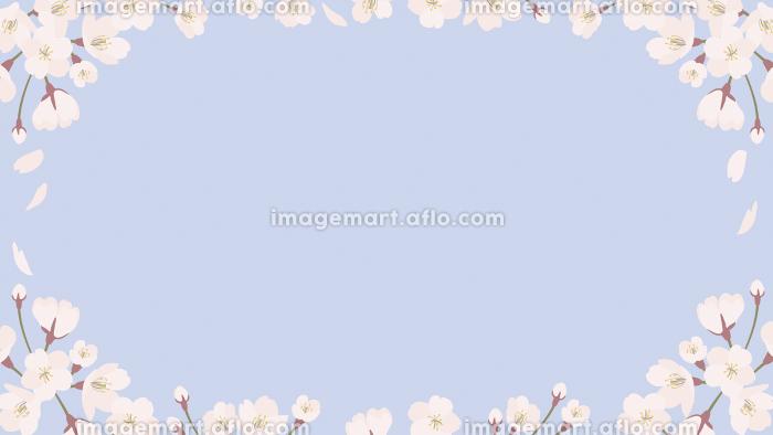 background_sakura 5_5の販売画像