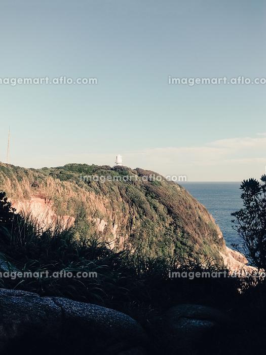 崖の上から見える海と灯台(日本・高知県・足摺岬)の販売画像