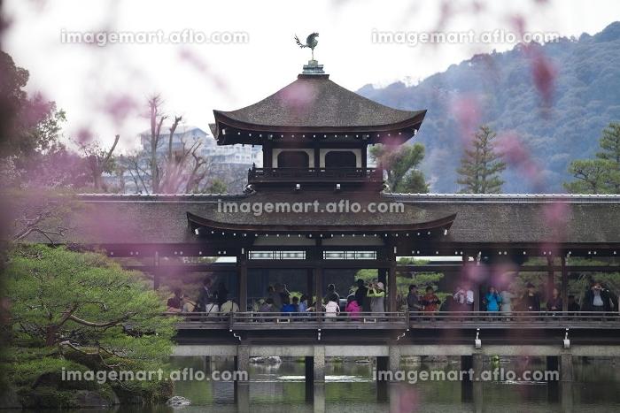 平安神宮東神苑の泰平閣