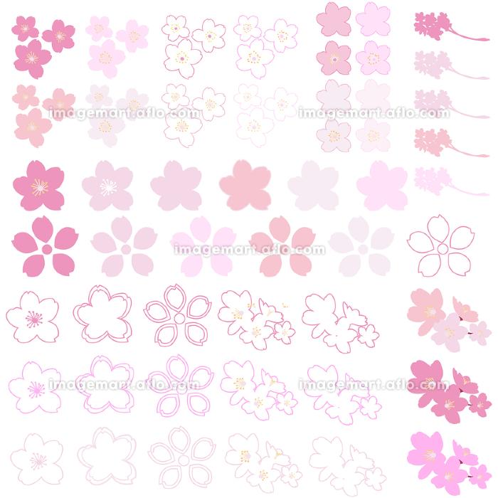 イラスト素材 桜 さくら サクラ 花びら シルエット マーク パターン ベクターの販売画像