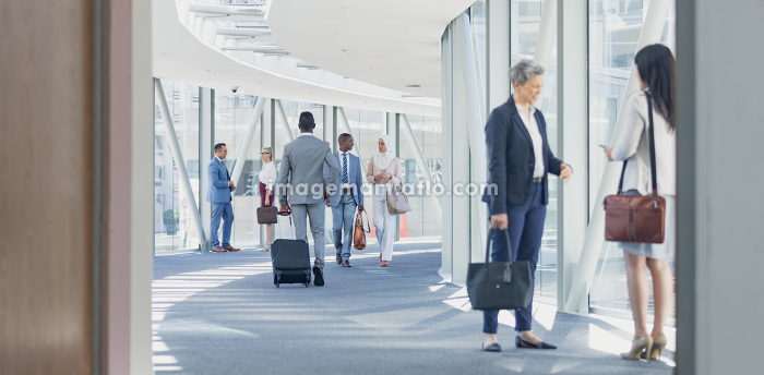 Side view of businesswomen interacting with each other in corridor in modern officeの販売画像