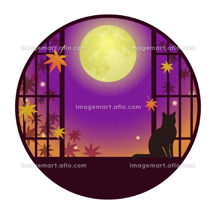猫が佇む和風窓 満月と紅葉の販売画像