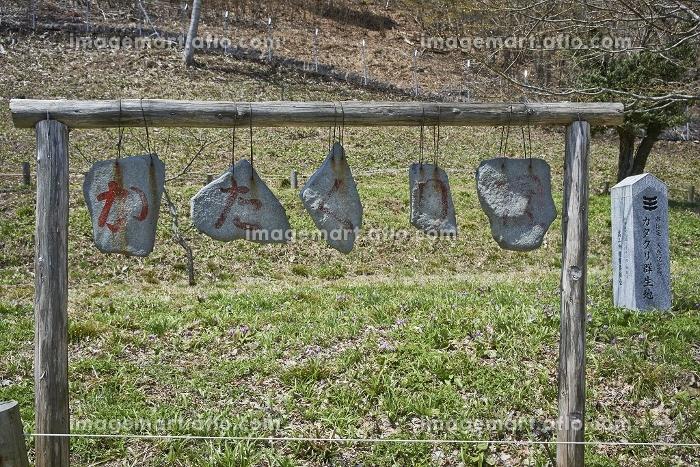 たたくと音の出る石板の販売画像