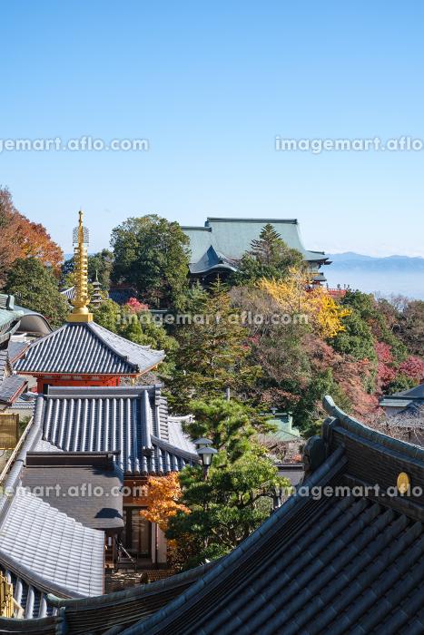 朝護孫子寺 (奈良県生駒郡 2020/12/09撮影)の販売画像