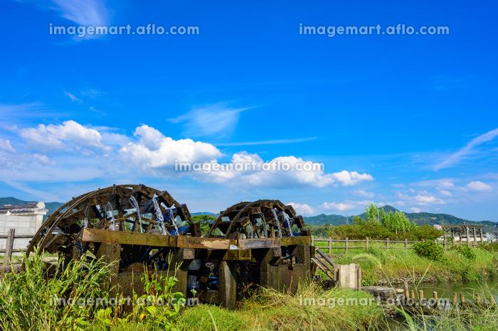 夏の青空のもと綺麗な水をくみ上げる古い水車(福岡県朝倉市)の販売画像