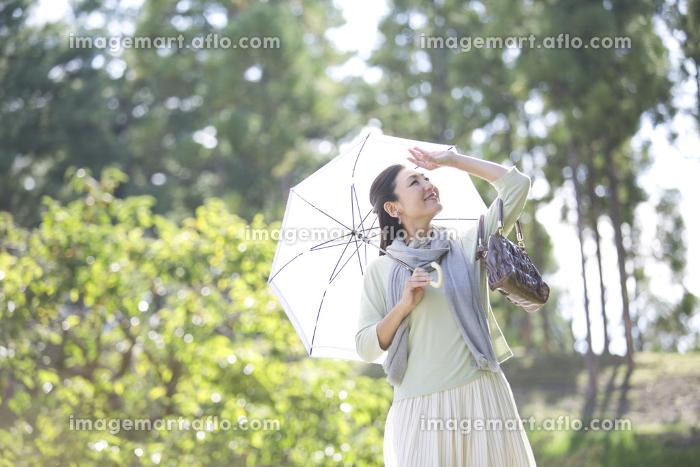 日傘をさす笑顔の中年女性の販売画像