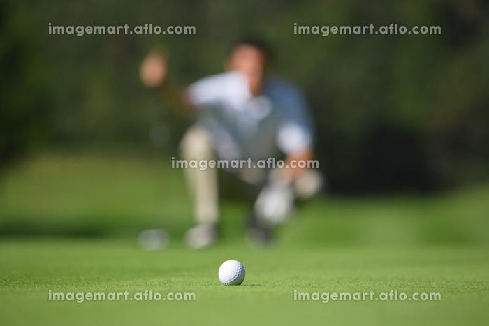 ゴルフボールとパッティングする男性の販売画像