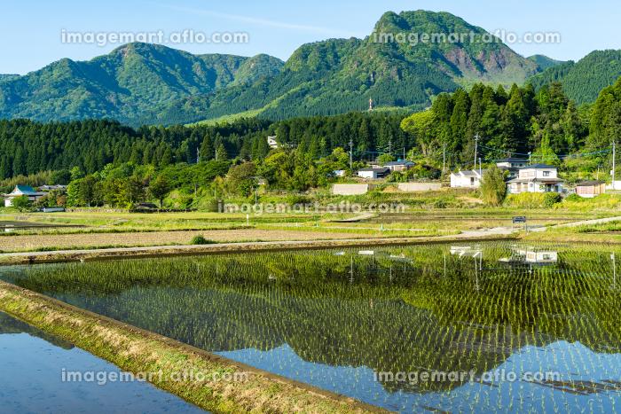 南阿蘇村の風景の販売画像