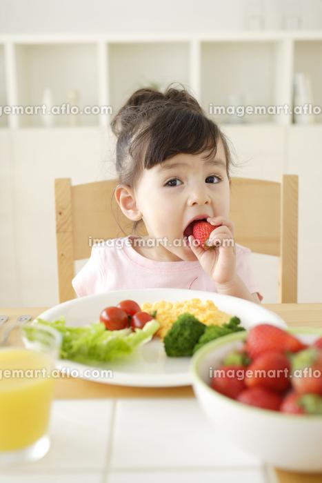 朝食を食べるハーフの子供の販売画像