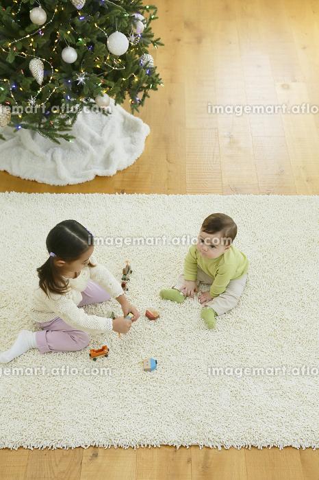 クリスマスツリーのあるリビングで遊ぶきょうだいの販売画像