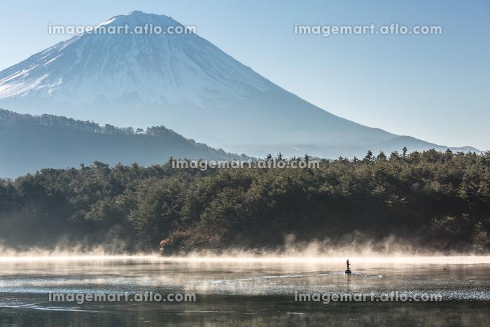 Mountain Fuji Lake saikoの販売画像
