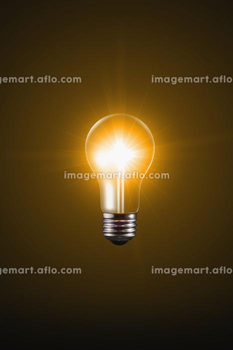 光る電球の販売画像