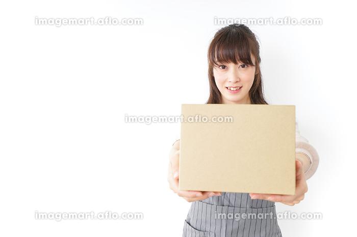 DIYをする若い女性の販売画像